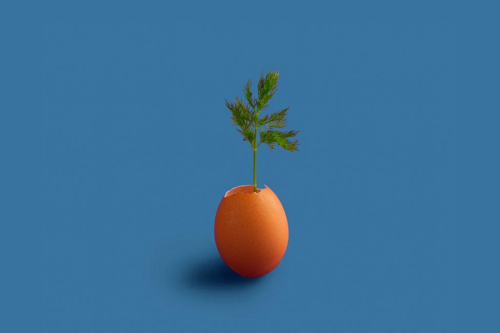 องค์กรยุคใหม่ใส่ใจความยั่งยืน – เส้นทางการทำธุรกิจให้ประสบความสำเร็จ