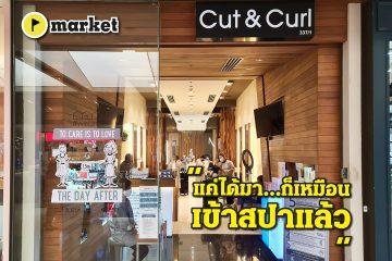 Cut & Curl - market