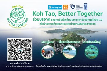 ระดมทุน Koh Tao Better together