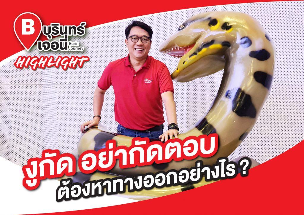 งูกัด อย่ากัดตอบ ต้องหาทางออกอย่างไร ?
